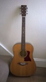 Tanglewood Black Mountain Wildwood TBM-110L Accoustic Guitar.