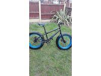 Kids fat wheel bike
