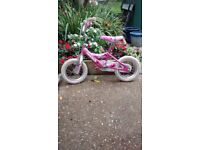 Dynacraft Girl's Magna Lil Dreamer Bike