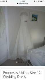 Pronovias Udine Wedding Dress