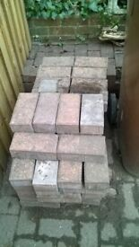98 red brick pavers, used but in excellent condition.