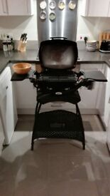 Weber Gas Barbeque / Barbecue / BBQ with extras
