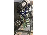 Sceptre challenge bike.