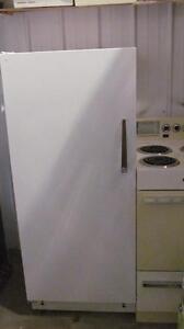 Petit réfrigérateur de 24 pouces de largeur -  Livré: essence seulement