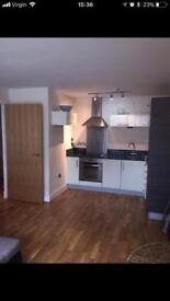 1 bedroom furnished apartment Sheffield S3