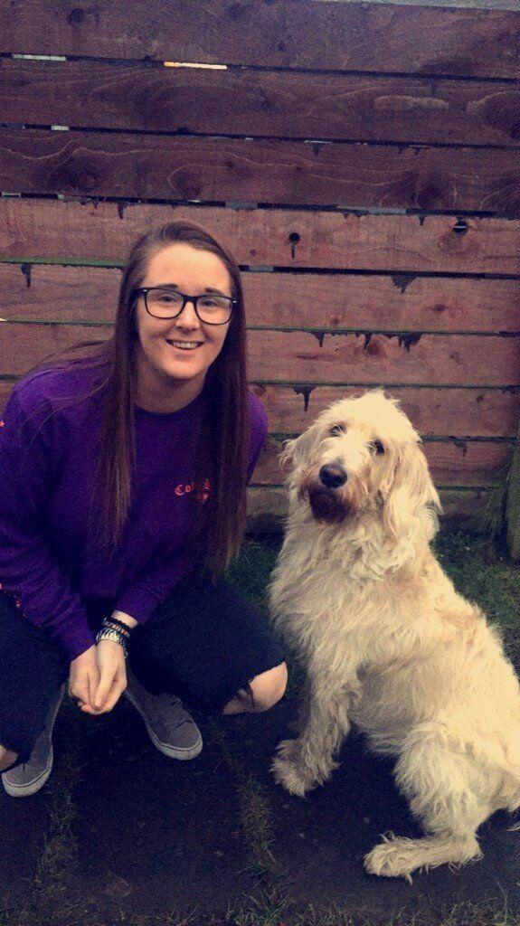 Dog Walker based in Glasgow