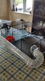 Large Hamster cage nr Wragby/Bardney/Lincoln