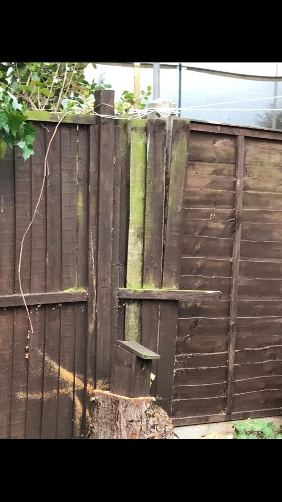 2 garden fences need to be tightened up plz