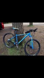 Cube Ltd Pro Race Mountain Bike