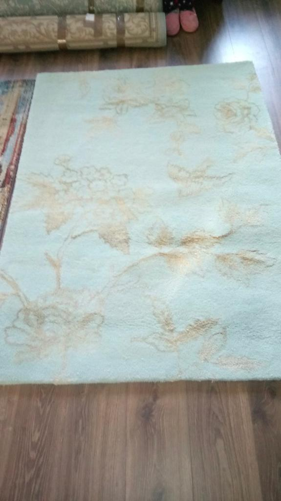 Next Gold And Duckegg Rug In Millisle County Down Gumtree