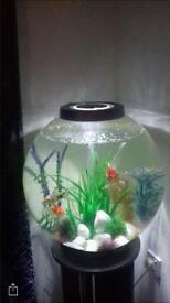 60 litre bio orb fish tank