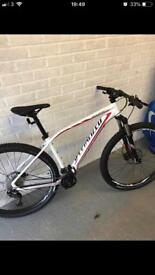 Specialized rock hopper comp