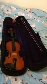Cathedral acoustic violin
