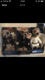 Compare the market meerkats x12
