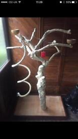 Bird Java Tree