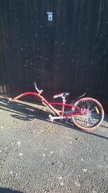 Tag along bike