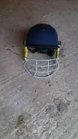 Woodworm cricket helmet