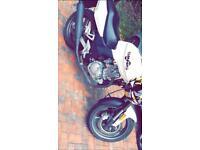 Sinnis stealth motorbike