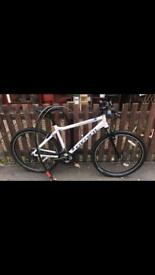 Men's Carerra Bike white