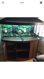 Juwel vision 450L FISH TANK AQUARIUM DARKWOOD 6months old grab bargain twin t5 External