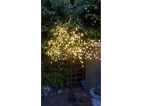 large light up tree