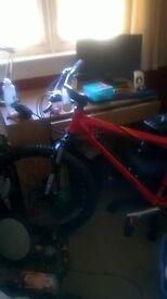 DBR diamond back mountain bike