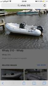 Whaly 310 boat and Mercury 9.9