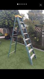 Electricians ladder