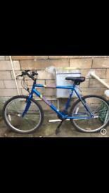 Adult Mountain Bike 14 Gears