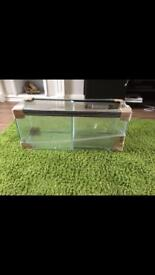 3ft tank w/ OPTIWHITE glass & Centre partition and sliding glass lid