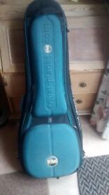 Guitar hard shell case/bag