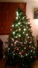 Beautifull 6' Christmas tree with new and older style decorations.