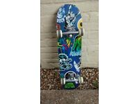 Saltrock skateboard excellent condition