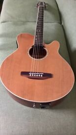 Westfield small bodied electro acoustic dual pickup cutaway guitar with stand