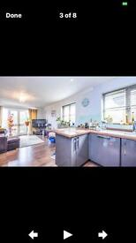 1 double bed flat for short term rental