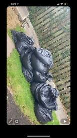 Free garden soil- bagged ready for collection