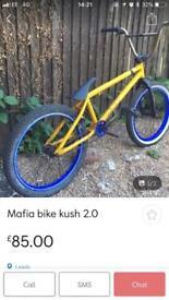 Mafia bike Kush 2.0 CHEAP.