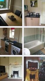House Mate Wanted
