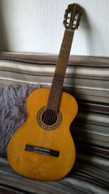 guitar classical nylon string acoustic