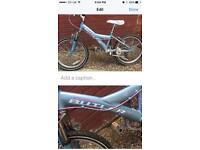 Girls Claud Butler mountain bike