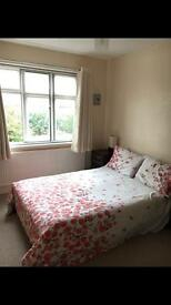 Spacious single room in a friendly house in Ealing