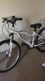 Apollo women's mountain bike brand new with warranty