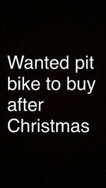 Wanted pit bike