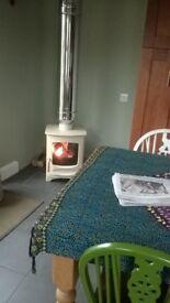 Wood / multi fuel burner