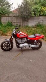 Harley Davidson 1200 XR as new condition recent full service with new tyres