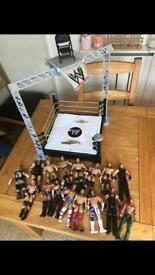 Wwe ring and wrestles