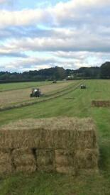 Hay and Straw small squares.