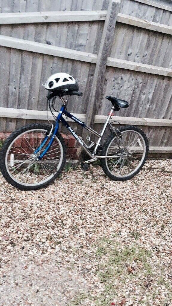 Blue/Silver Bike for sale.