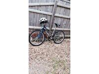 Blue/Silver Bike for sale.
