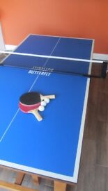 Table Tennis Table with accessories